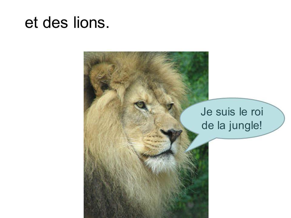 et des lions. Je suis le roi de la jungle!