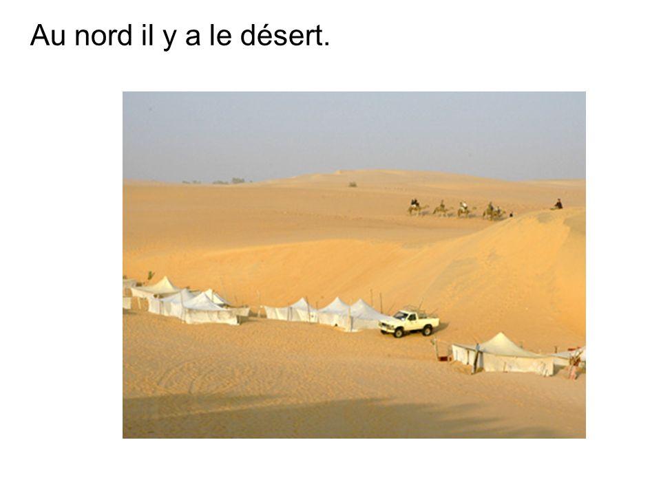 Au nord il y a le désert.