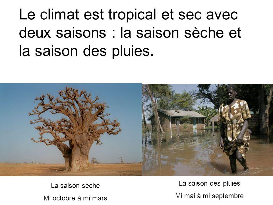 Le climat est tropical et sec avec deux saisons : la saison sèche et la saison des pluies. La saison sèche Mi octobre à mi mars La saison des pluies M