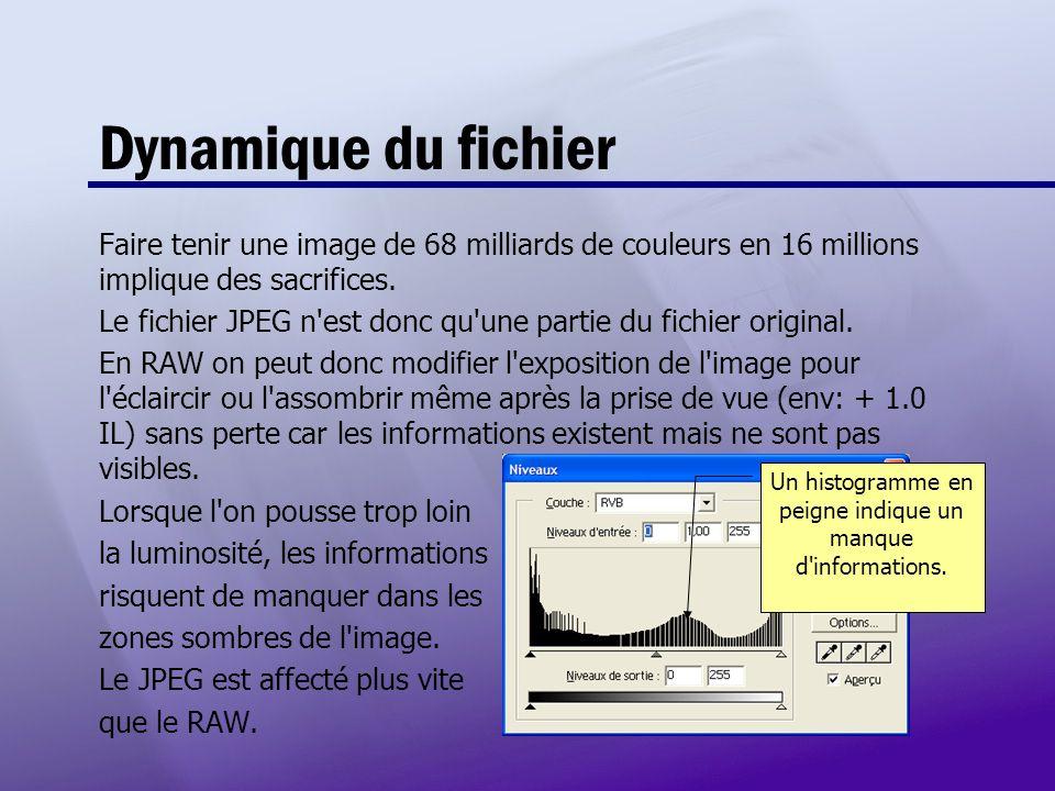 Dynamique du fichier Faire tenir une image de 68 milliards de couleurs en 16 millions implique des sacrifices. Le fichier JPEG n'est donc qu'une parti