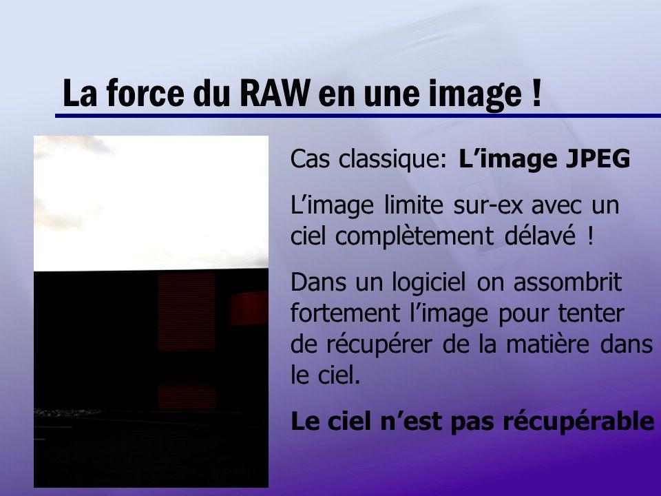 La force du RAW en une image ! Cas classique: Limage JPEG Limage limite sur-ex avec un ciel complètement délavé ! Dans un logiciel on assombrit fortem