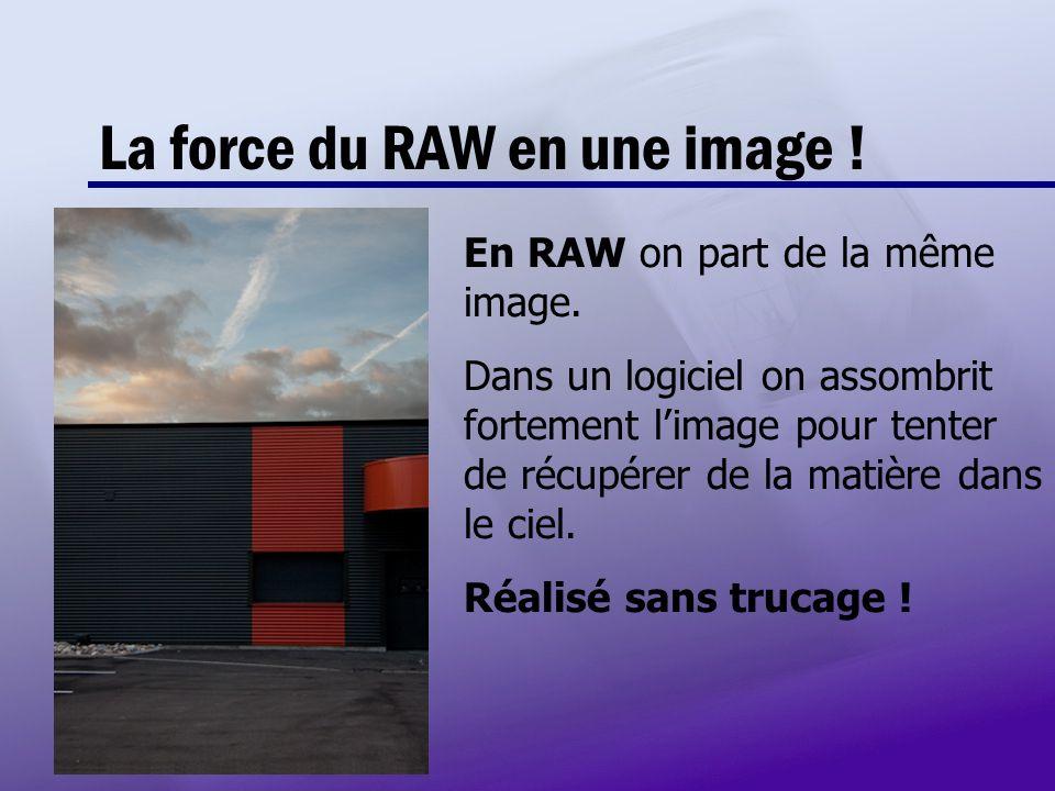La force du RAW en une image ! En RAW on part de la même image. Dans un logiciel on assombrit fortement limage pour tenter de récupérer de la matière