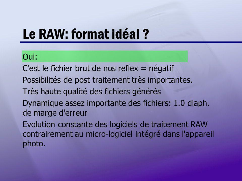 Le RAW: format idéal ? Oui: C'est le fichier brut de nos reflex = négatif Possibilités de post traitement très importantes. Très haute qualité des fic