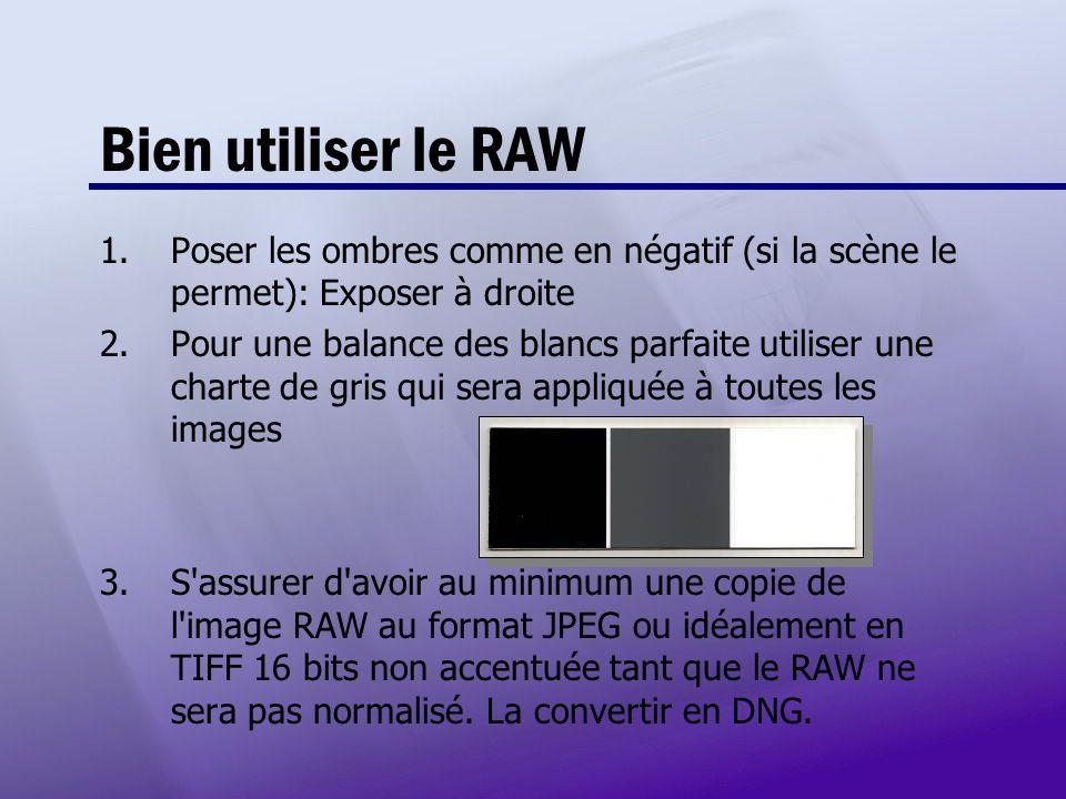 Bien utiliser le RAW 1.Poser les ombres comme en négatif (si la scène le permet): Exposer à droite 2.Pour une balance des blancs parfaite utiliser une