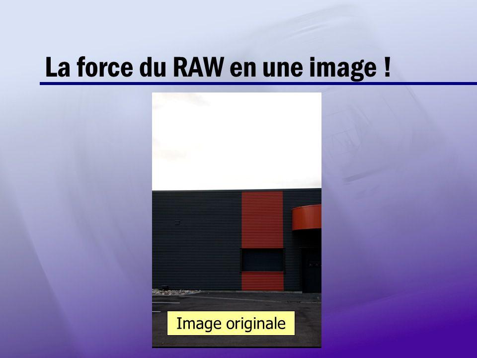 RAW JPEG La force du RAW en une image ! Image originale
