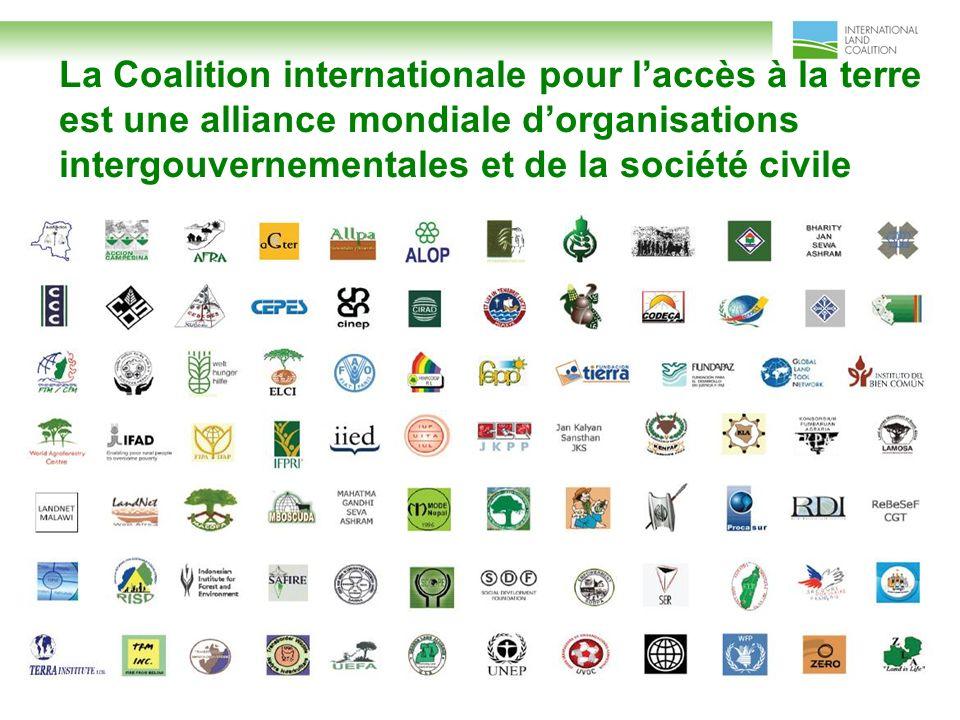 La Coalition internationale pour laccès à la terre est une alliance mondiale dorganisations intergouvernementales et de la société civile