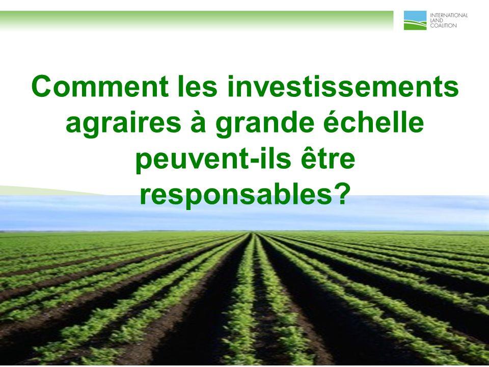Comment les investissements agraires à grande échelle peuvent-ils être responsables