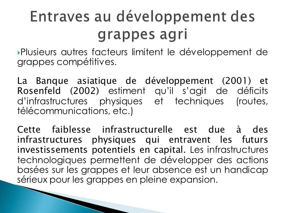 Plusieurs autres facteurs limitent le développement de grappes compétitives. La Banque asiatique de développement (2001) et Rosenfeld (2002) estiment