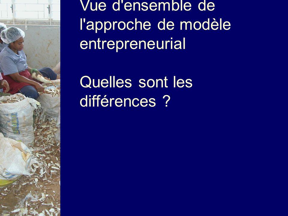 Vue d'ensemble de l'approche de modèle entrepreneurial Quelles sont les différences ?