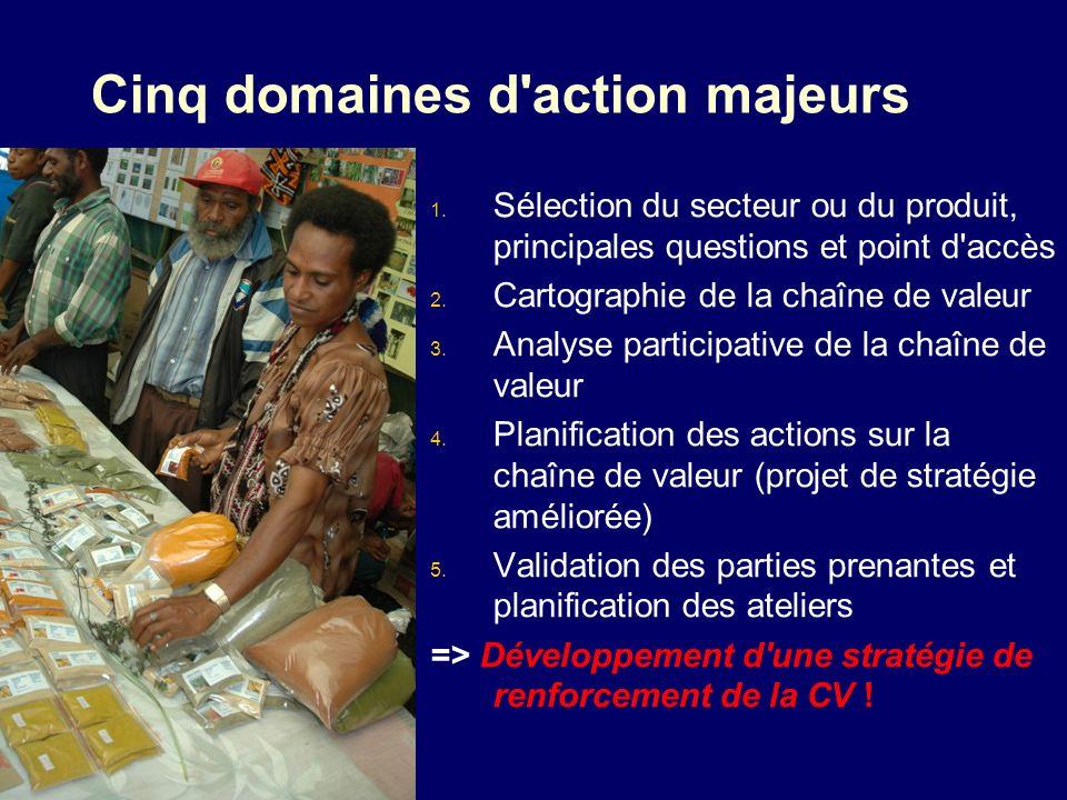 Cinq domaines d'action majeurs 1. Sélection du secteur ou du produit, principales questions et point d'accès 2. Cartographie de la chaîne de valeur 3.