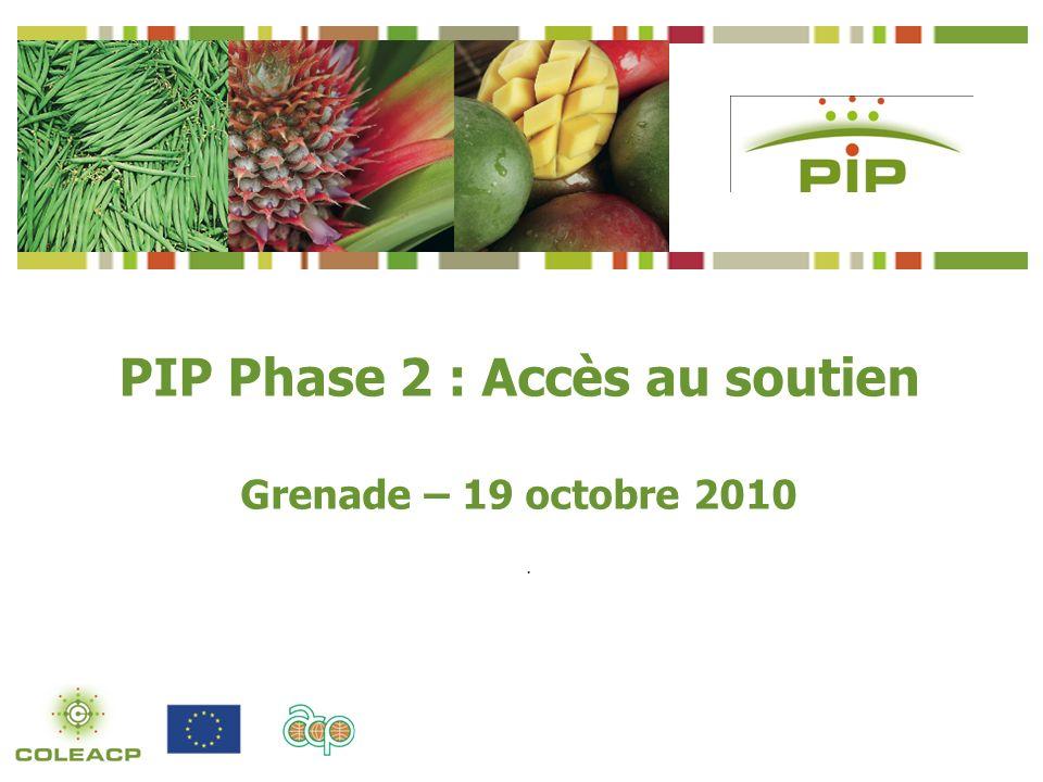 . PIP Phase 2 : Accès au soutien Grenade – 19 octobre 2010