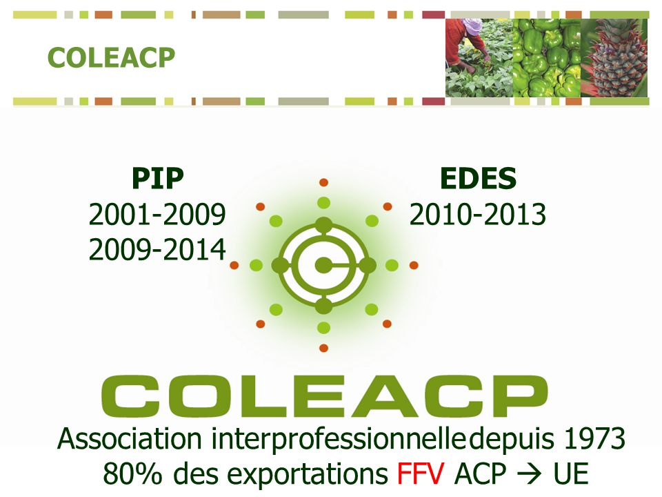 COLEACP PIP EDES Association interprofessionnelle depuis % des exportations FFV ACP UE