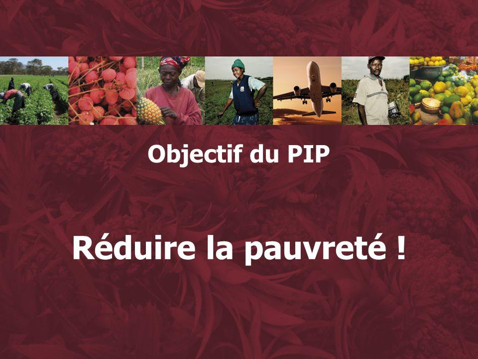 3 Objectif du PIP Réduire la pauvreté !