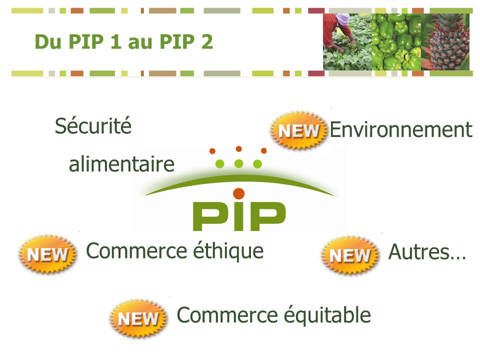 Du PIP 1 au PIP 2 Sécurité alimentaire Commerce éthique Environnement Autres… Commerce équitable