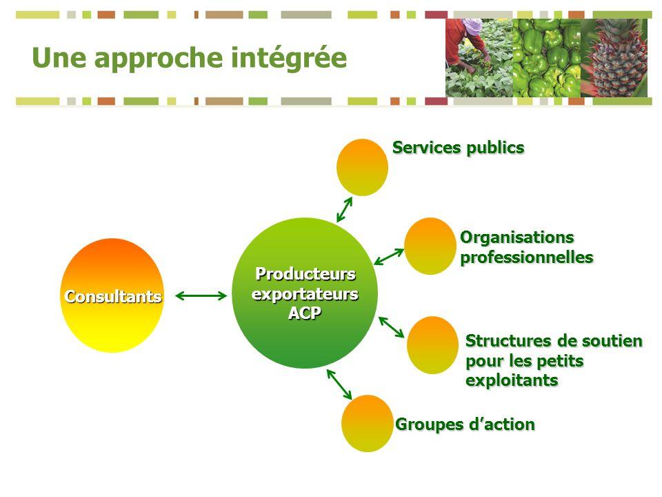 Producteurs exportateurs ACP Consultants Services publics Organisations professionnelles Groupes daction Structures de soutien pour les petits exploitants Une approche intégrée