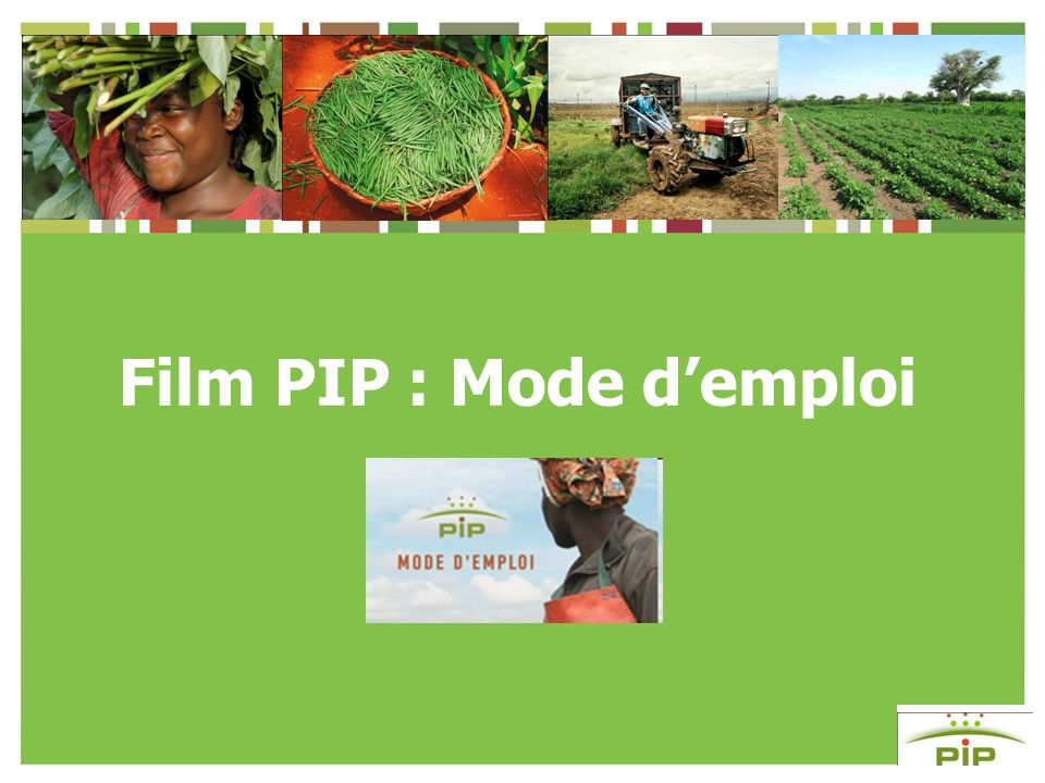 Film PIP : Mode demploi