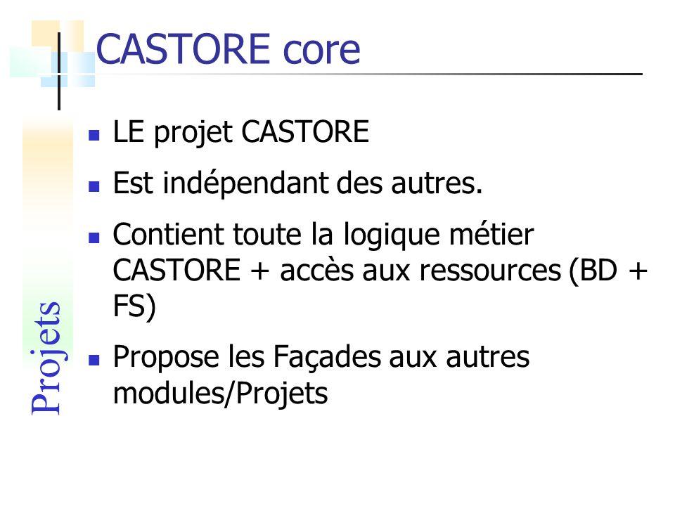 CASTORE core LE projet CASTORE Est indépendant des autres. Contient toute la logique métier CASTORE + accès aux ressources (BD + FS) Propose les Façad
