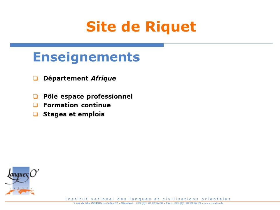 Site de Riquet Enseignements Département Afrique Pôle espace professionnel Formation continue Stages et emplois