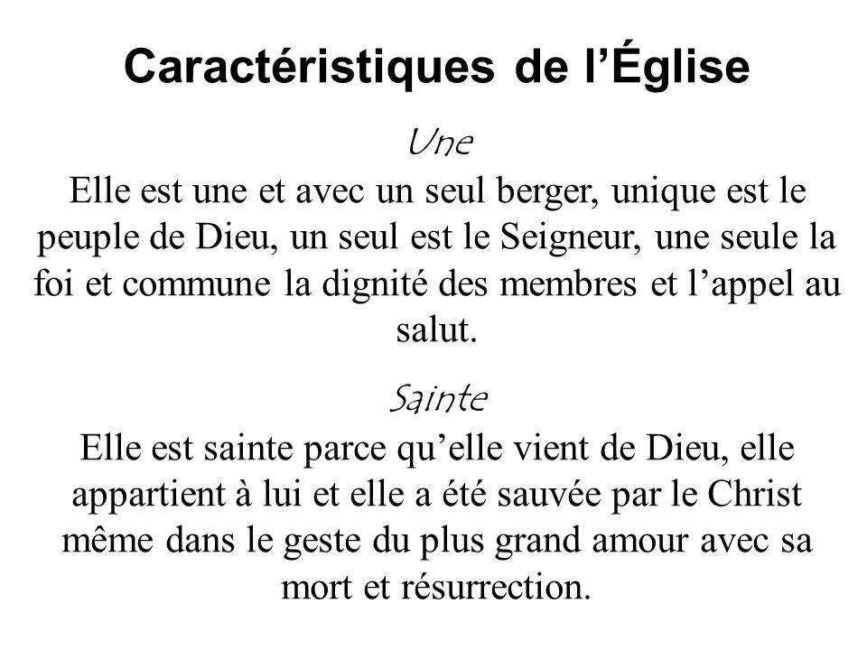 Caractéristiques de lÉglise Une Elle est une et avec un seul berger, unique est le peuple de Dieu, un seul est le Seigneur, une seule la foi et commun