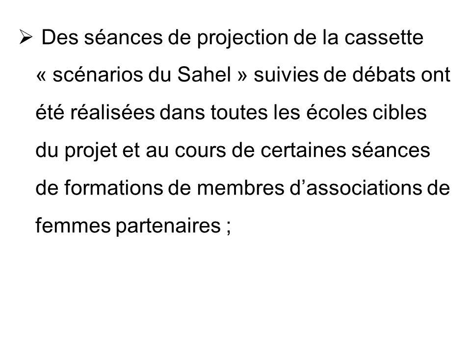 Des séances de projection de la cassette « scénarios du Sahel » suivies de débats ont été réalisées dans toutes les écoles cibles du projet et au cour