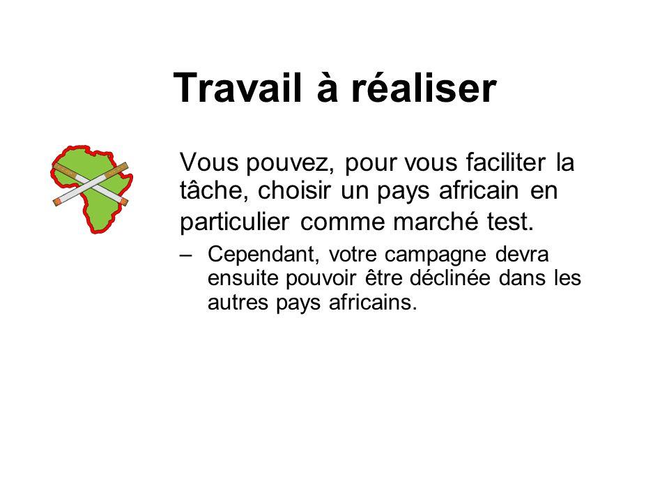 Travail à réaliser Vous pouvez, pour vous faciliter la tâche, choisir un pays africain en particulier comme marché test.