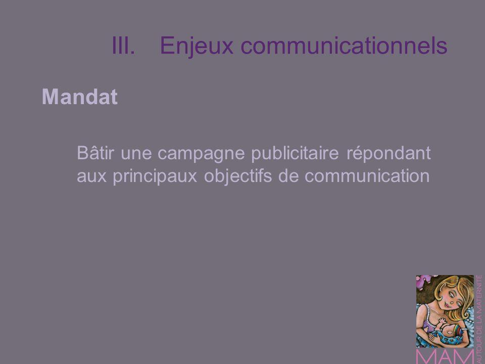 Mandat Bâtir une campagne publicitaire répondant aux principaux objectifs de communication