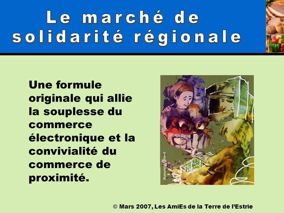 © Mars 2007, Les AmiEs de la Terre de lEstrie Une rencontre « virtuelle » sur la plate forme Web http://www.atestrie.com