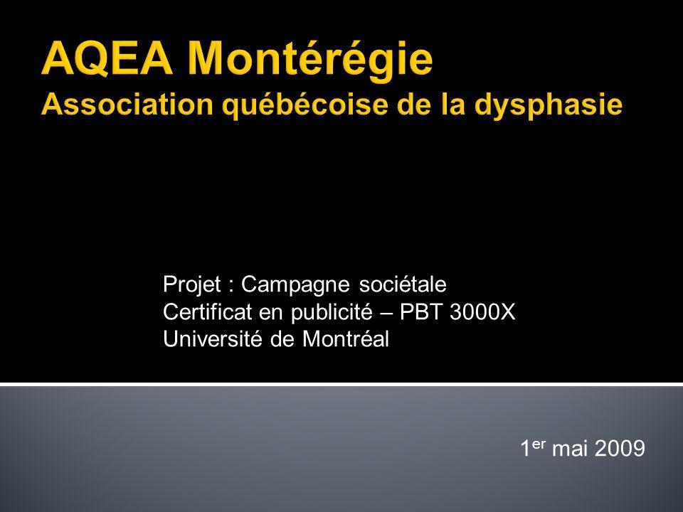 Projet : Campagne sociétale Certificat en publicité – PBT 3000X Université de Montréal 1 er mai 2009