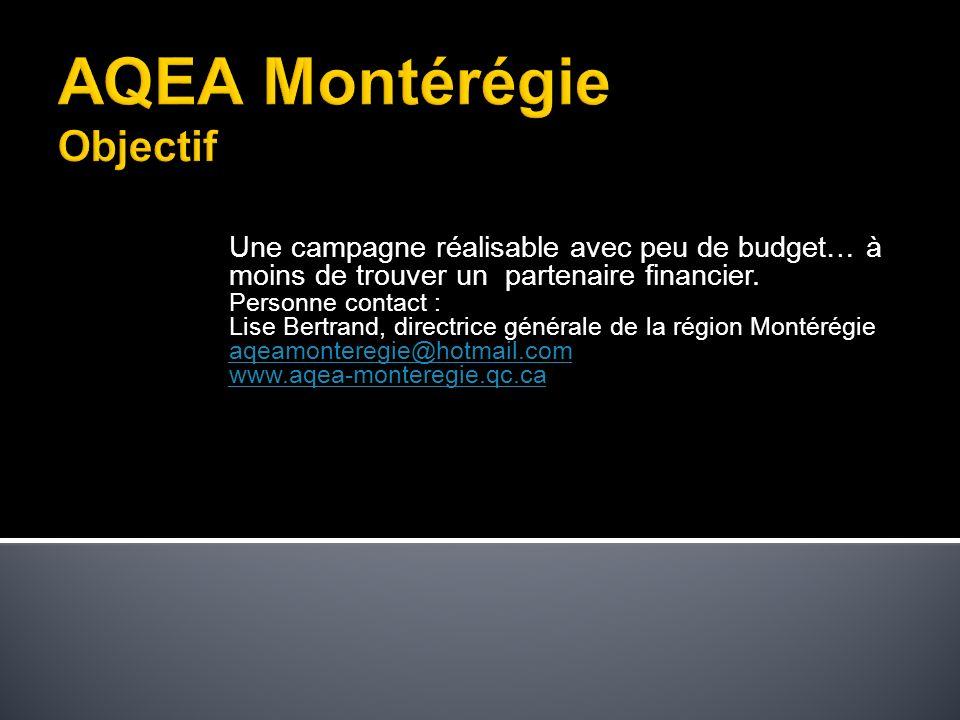 Une campagne réalisable avec peu de budget… à moins de trouver un partenaire financier.
