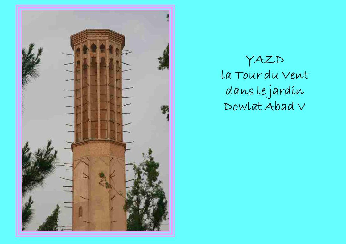 YAZD la Tour du Vent dans le jardin Dowlat Abad V