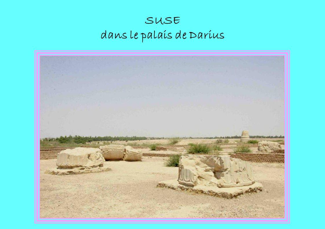 SUSE dans le palais de Darius
