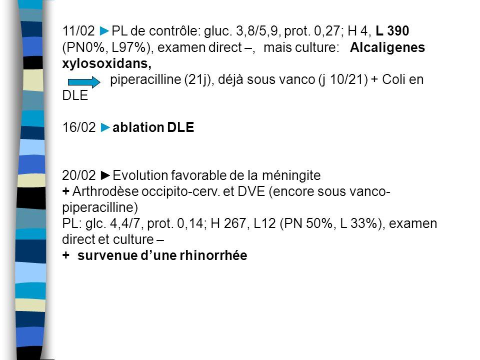 11/02 PL de contrôle: gluc. 3,8/5,9, prot. 0,27; H 4, L 390 (PN0%, L97%), examen direct –, mais culture: Alcaligenes xylosoxidans, piperacilline (21j)