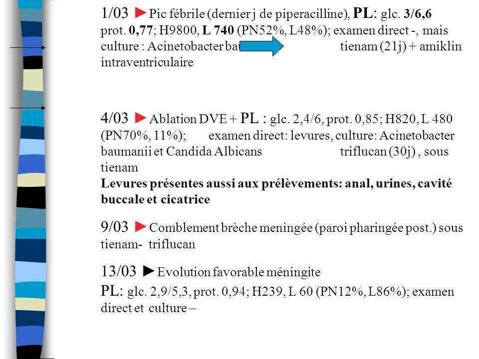 1/03 Pic fébrile (dernier j de piperacilline), PL: glc. 3/6,6 prot. 0,77; H9800, L 740 (PN52%, L48%); examen direct -, mais culture : Acinetobacter ba