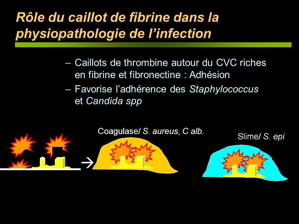 Rôle du caillot de fibrine dans la physiopathologie de linfection –Caillots de thrombine autour du CVC riches en fibrine et fibronectine : Adhésion –F