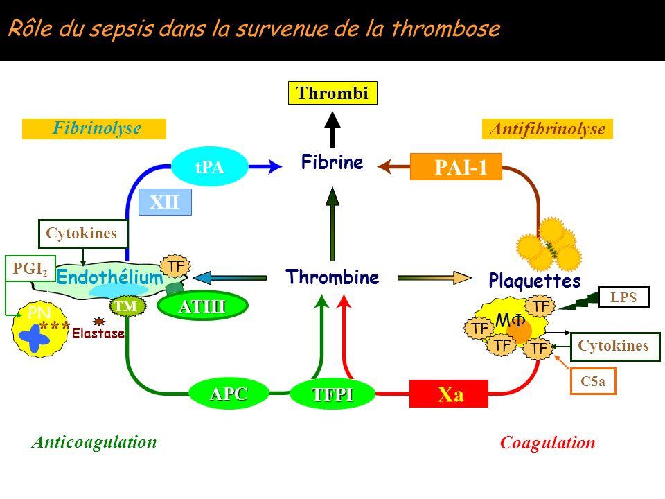 Héparine et adhésion bactérienne Appelgreen et al – CCM 1996; 24:1482 n Introduction de radicaux hydrophiles (SO3H, OH, CO CC) et adsorbtion dun amine polymérique puis attachement de lhéparine (Stabilité 4 Mois) n S.
