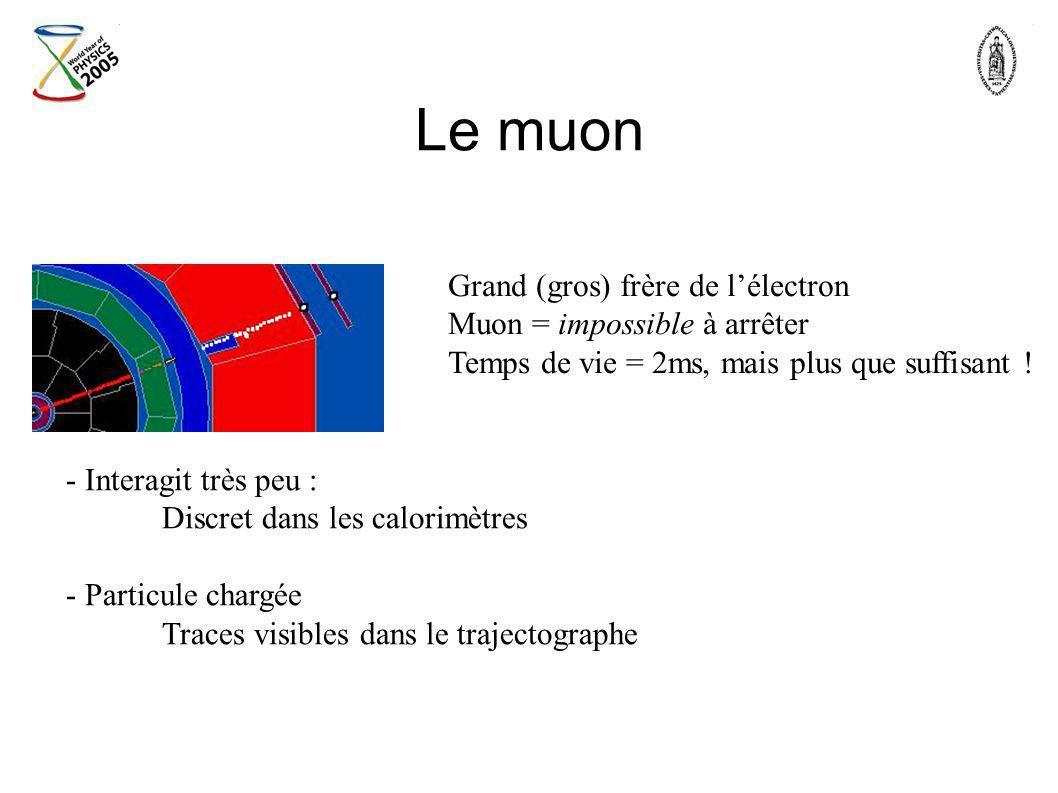 Le muon - Interagit très peu : Discret dans les calorimètres - Particule chargée Traces visibles dans le trajectographe Grand (gros) frère de lélectro
