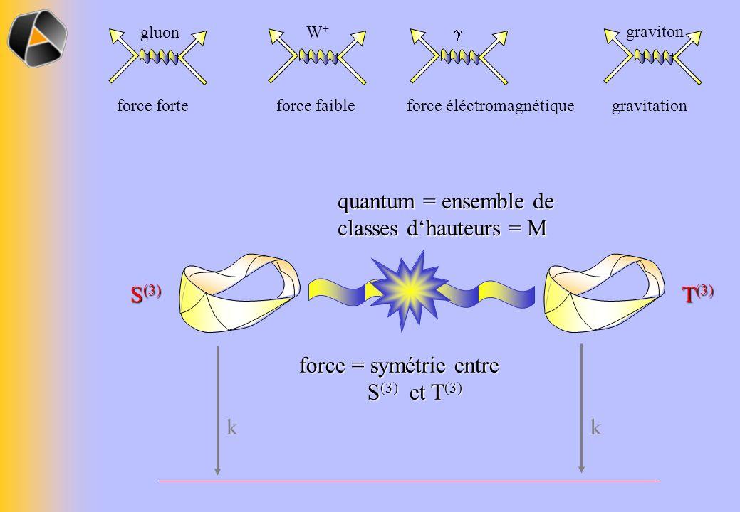 S (3) T (3) gluon force forte W+W+ force faible force éléctromagnétique graviton gravitation force = symétrie entre S (3) et T (3) S (3) et T (3) quantum = ensemble de classes dhauteurs = M kk