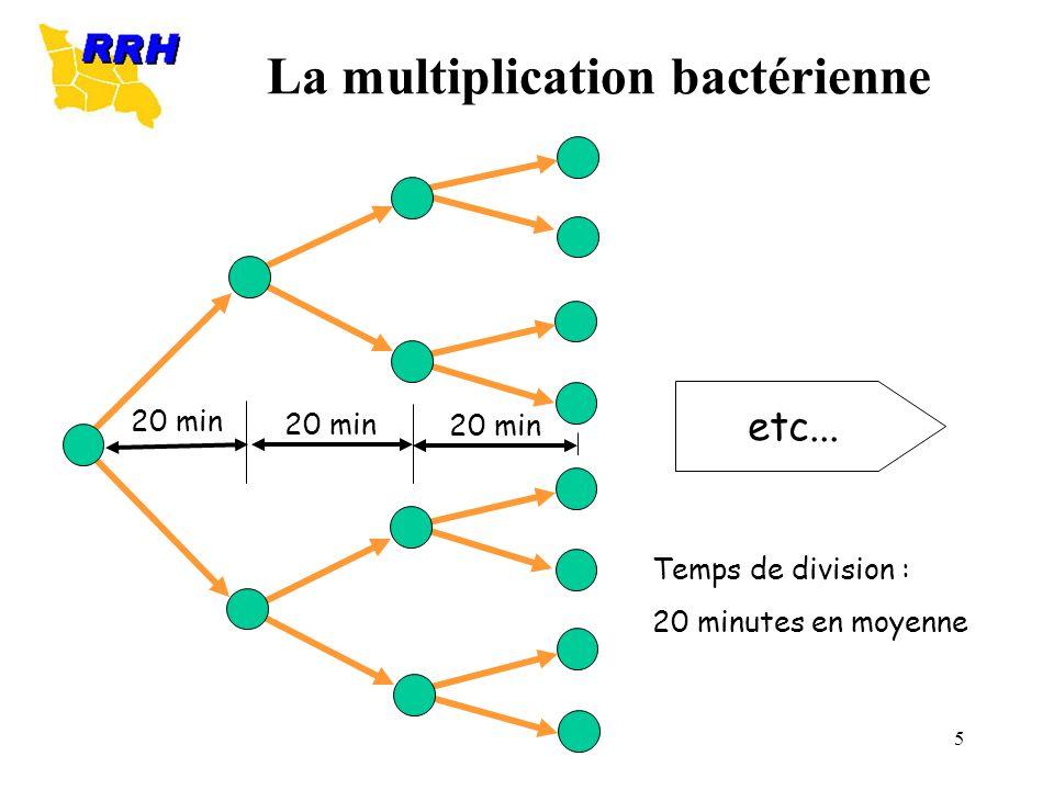 5 20 min etc... Temps de division : 20 minutes en moyenne La multiplication bactérienne