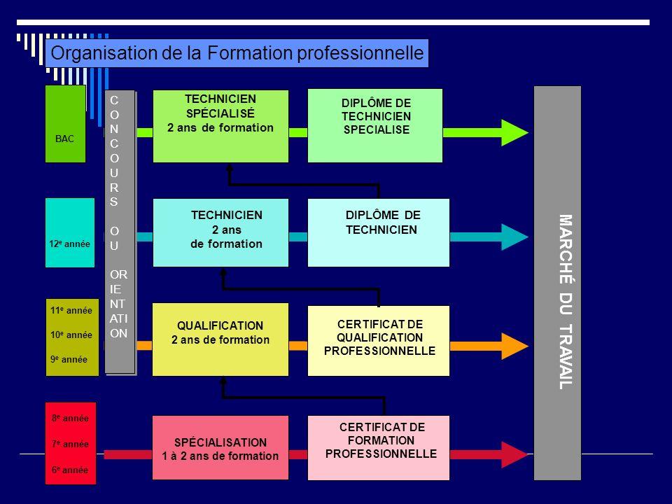 Organisation de la Formation professionnelle BAC TECHNICIEN SPÉCIALISÉ 2 ans de formation DIPLÔME DE TECHNICIEN SPECIALISE 12 e année TECHNICIEN 2 ans
