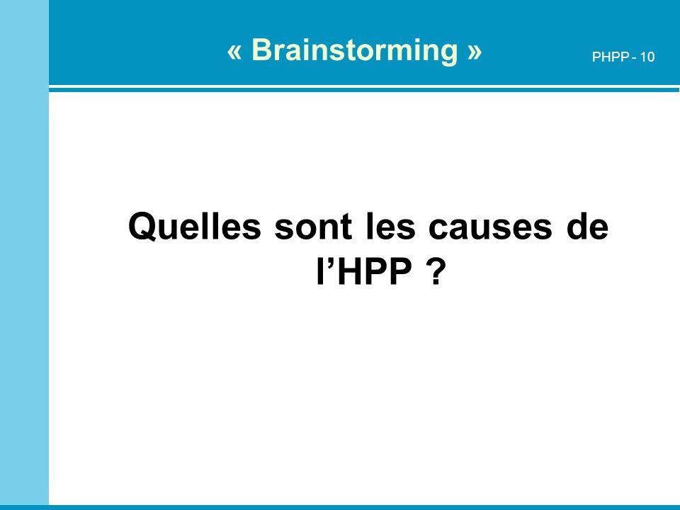 « Brainstorming » Quelles sont les causes de lHPP ? PHPP - 10