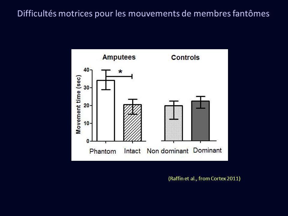 Difficultés motrices pour les mouvements de membres fantômes (Raffin et al., from Cortex 2011)