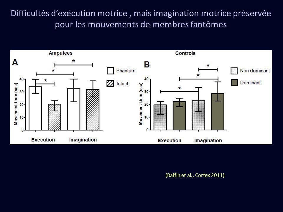 Difficultés dexécution motrice, mais imagination motrice préservée pour les mouvements de membres fantômes (Raffin et al., Cortex 2011)