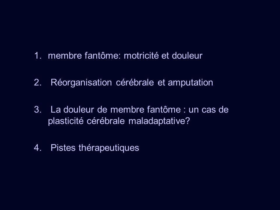 1.membre fantôme: motricité et douleur 2. Réorganisation cérébrale et amputation 3. La douleur de membre fantôme : un cas de plasticité cérébrale mala