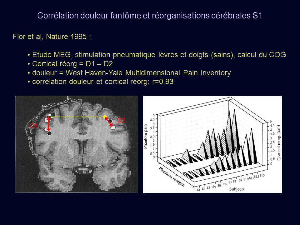 Flor et al, Nature 1995 : Etude MEG, stimulation pneumatique lèvres et doigts (sains), calcul du COG Cortical réorg = D1 – D2 douleur = West Haven-Yal