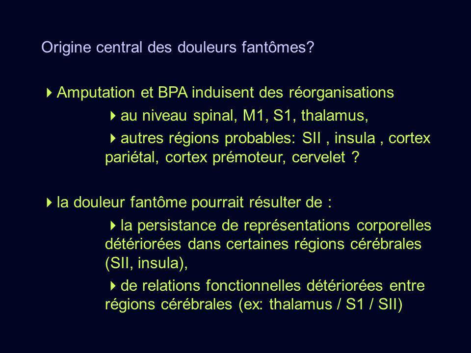 Origine central des douleurs fantômes? Amputation et BPA induisent des réorganisations au niveau spinal, M1, S1, thalamus, autres régions probables: S