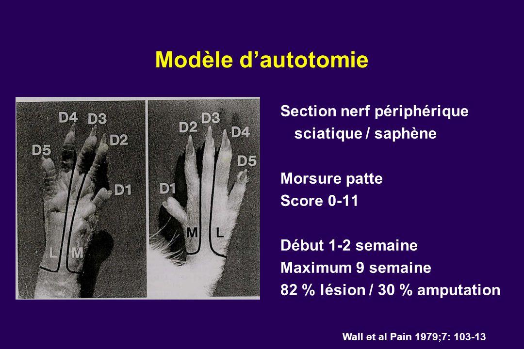 Modèle dautotomie Wall et al Pain 1979;7: 103-13 Section nerf périphérique sciatique / saphène Morsure patte Score 0-11 Début 1-2 semaine Maximum 9 se