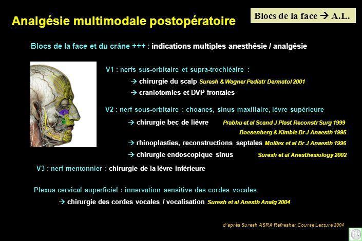 daprès Suresh ASRA Refresher Course Lecture 2004 Blocs de la face et du crâne +++ : indications multiples anesthésie / analgésie V1 : nerfs sus-orbita