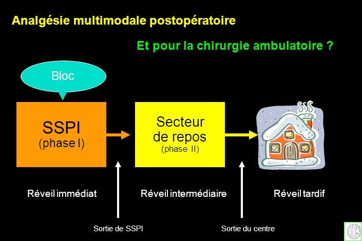 Secteur de repos (phase II) SSPI (phase I) Réveil immédiatRéveil intermédiaireRéveil tardif Sortie de SSPISortie du centre Bloc Analgésie multimodale