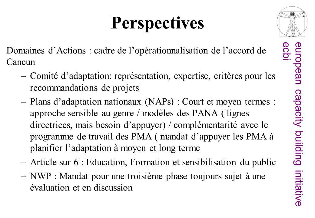 european capacity building initiativeecbi Perspectives Domaines dActions : cadre de lopérationnalisation de laccord de Cancun –Comité dadaptation: rep