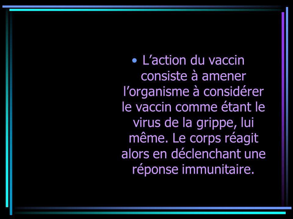 Laction du vaccin consiste à amener lorganisme à considérer le vaccin comme étant le virus de la grippe, lui même. Le corps réagit alors en déclenchan